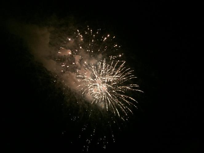 Lisa's fireworks
